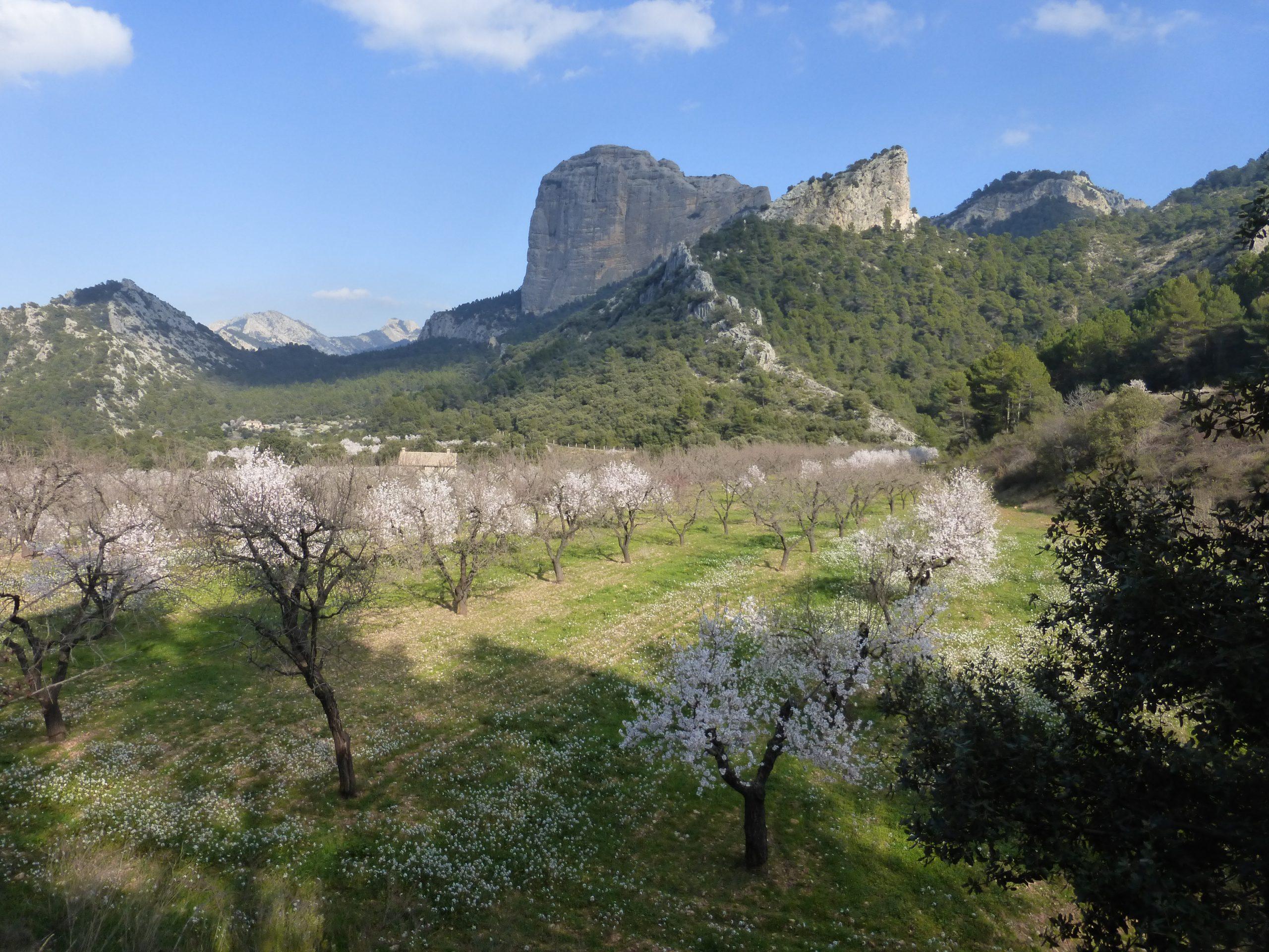 Trekking Estels del Sud. Parque Natural dels Ports. Beceite.