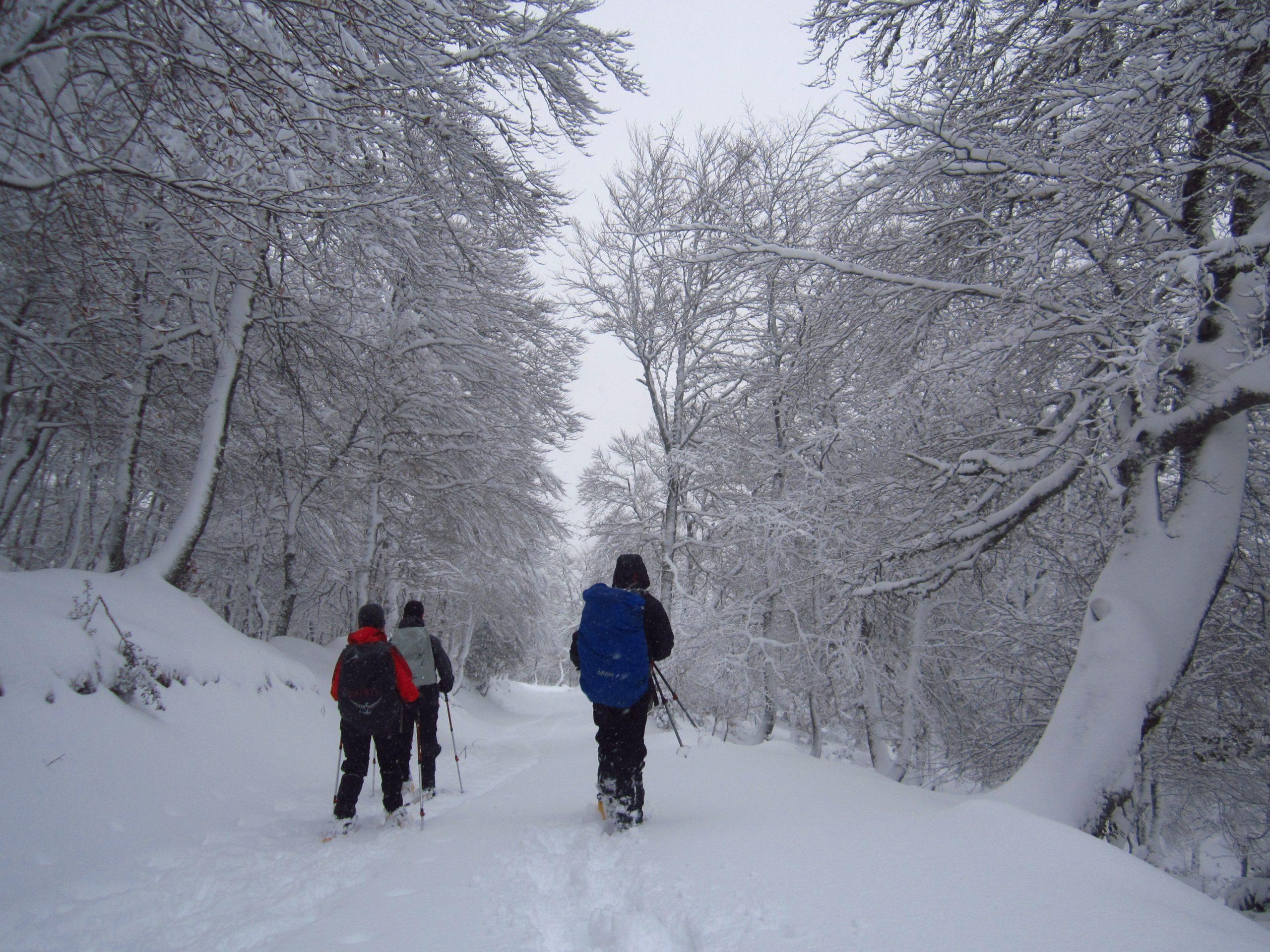 Valle de Liébana, Picos de Europa. Senderismo invernal con raquetas de nieve