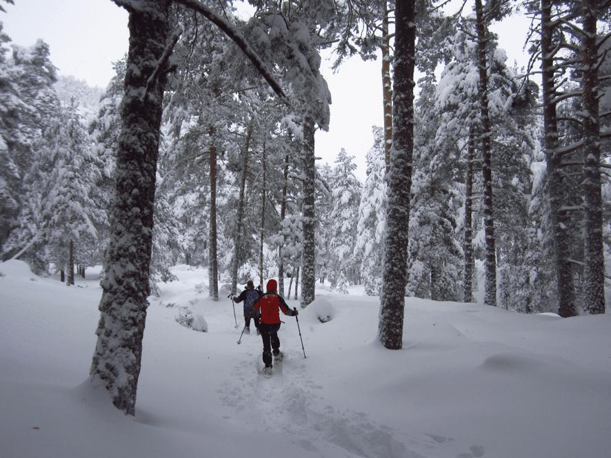 Rincones escondidos con raquetas de nieve. Sierra de Guadarrama