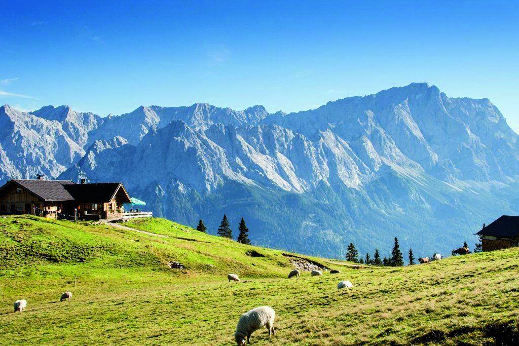 Senderismo en la Selva Negra y los Alpes Bávaros.