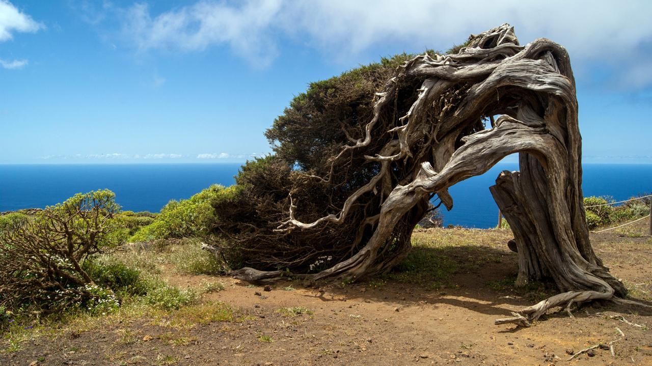 Senderismo en el Hierro. Islas Canarias