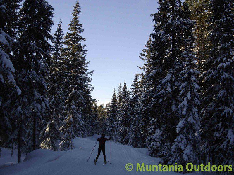 Tuixent – La Vansa: de la Trementina al esquí de fondo